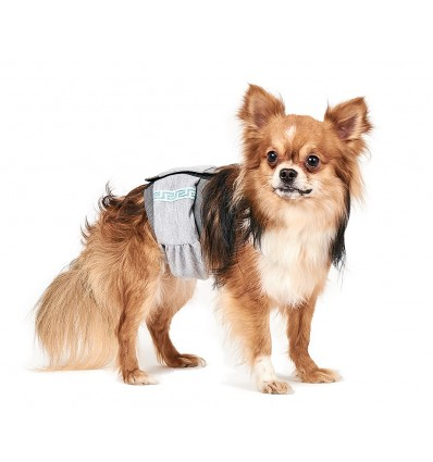 Sanitary belt for dogs
