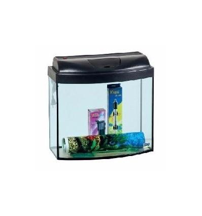 Aquarium set «angelfish»